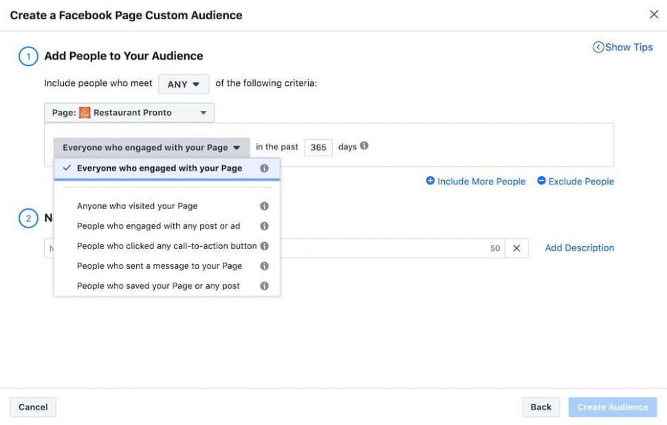 facebook page custom audience options