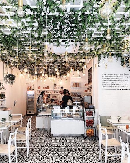 hanging plants in a restaurant